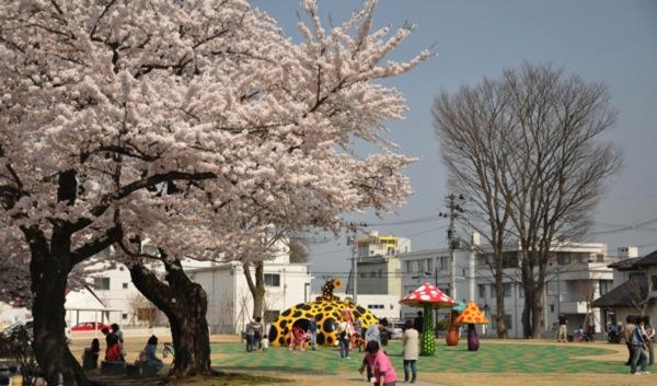 十和田市サクラ 02 20140426 221417