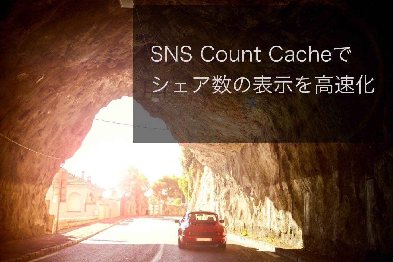 SNS Count Cache 01 20150131 152812